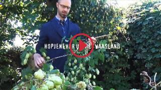 Overzicht videoreportages - Hopjenever uit het Waasland