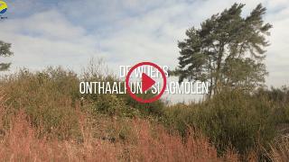 Overzicht videoreportages - De Wijers - Onthaalpunt Slagmolen